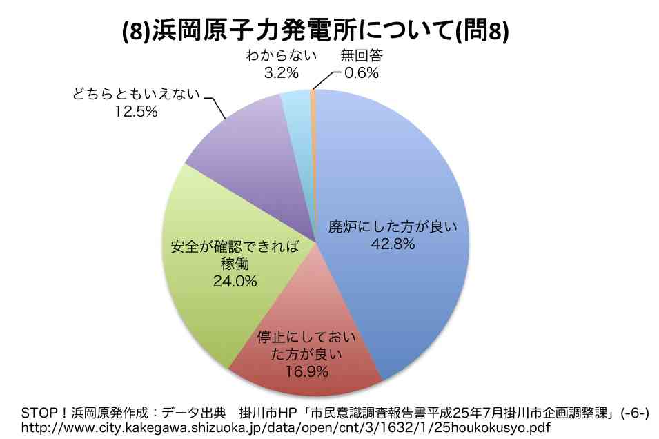 掛川市市民調査2013
